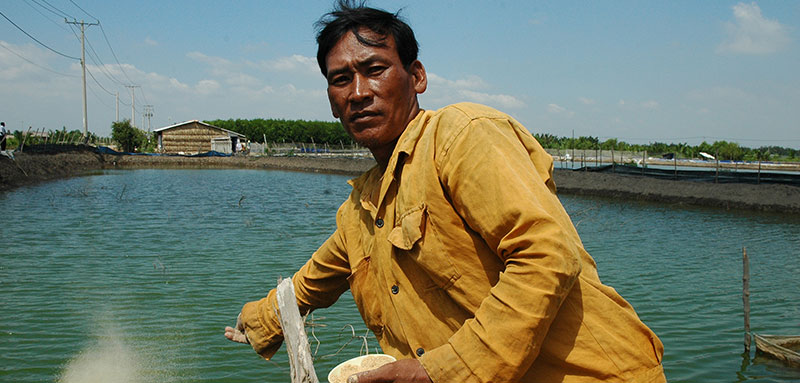 AusAID 2005; Fishing; Globalisation and Trade; Microfinance; Vietnam