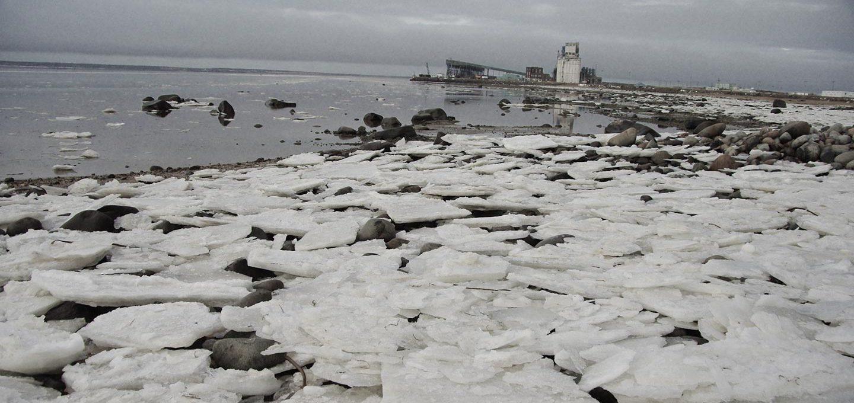 Der Wirtschaftsteil 245 Klima