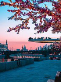 Zaryadye-Park-Moscow-Russia