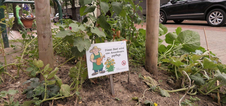 Gärtnern auf dem eigenen Balkon? Der Anbau von Obst und Gemüse in Kübeln und Blumenkästen mitten in der Stadt ist lange keine Seltenheit mehr. Häufig wird damit nicht nur der private Balkon oder Vorgarten verschönert, sondern auch diverse brachliegende urbane Flächen.