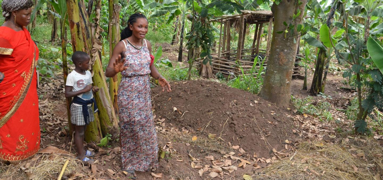 Organische Landwirtschaft für Entwicklung