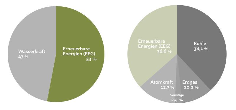 Strommix Ökostrom richtig nutzen und die Energiewende mitgestalten! Dominique Czech zeigt das mit Naturstrom, die Energiewende machbar ist.