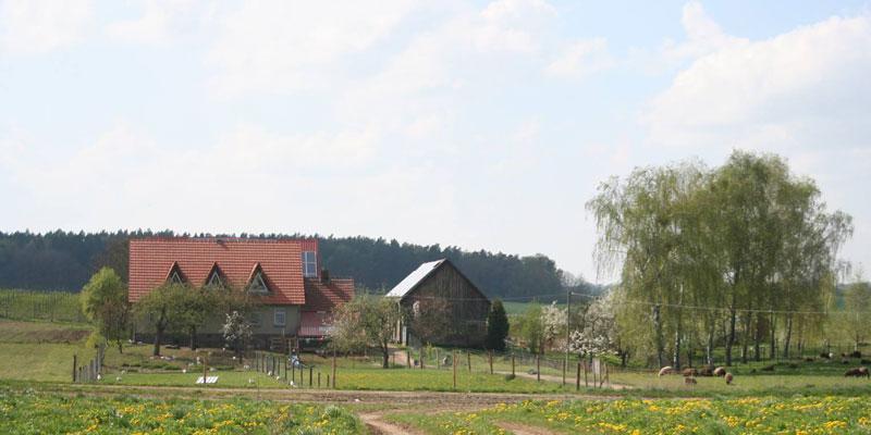 Demeter-Hof Weggun, Uckermarck BioBoden: Gemeinsam für zukunftsfähige Landwirtschaft