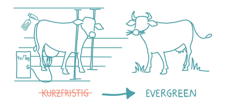 Purpose: Eigentum neu denken