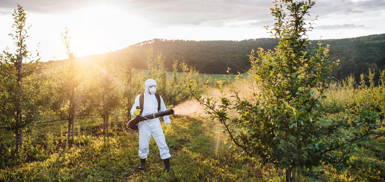 Landwirtschaft: mensch sprüht Pestizide